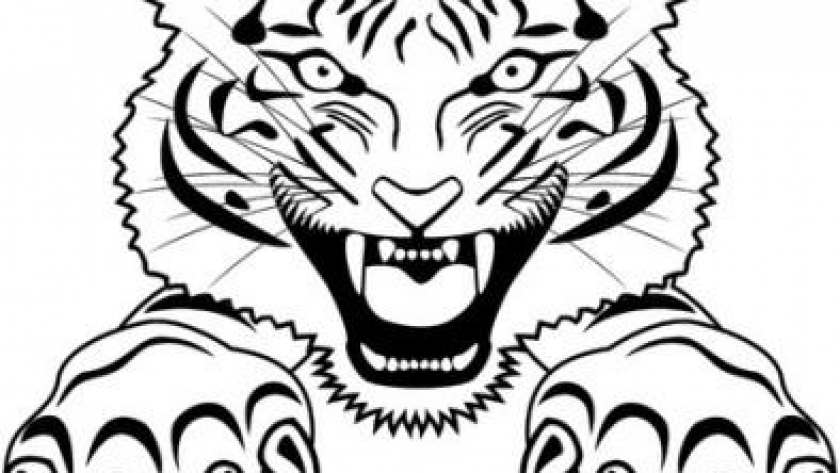 Tiger with Deadly Claws_compressed